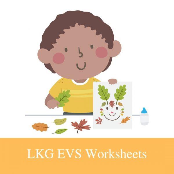 Buy LKG EVS Worksheets