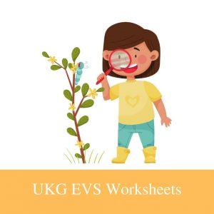 Buy UKG EVS Worksheets