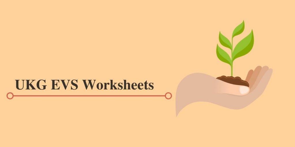 UKG EVS Workbooks